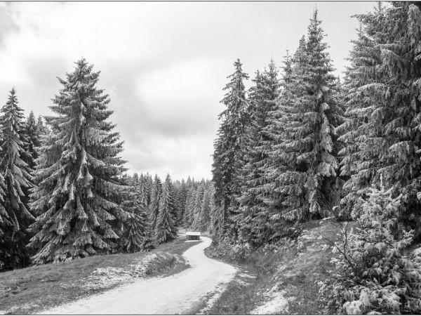 winter walking-tour